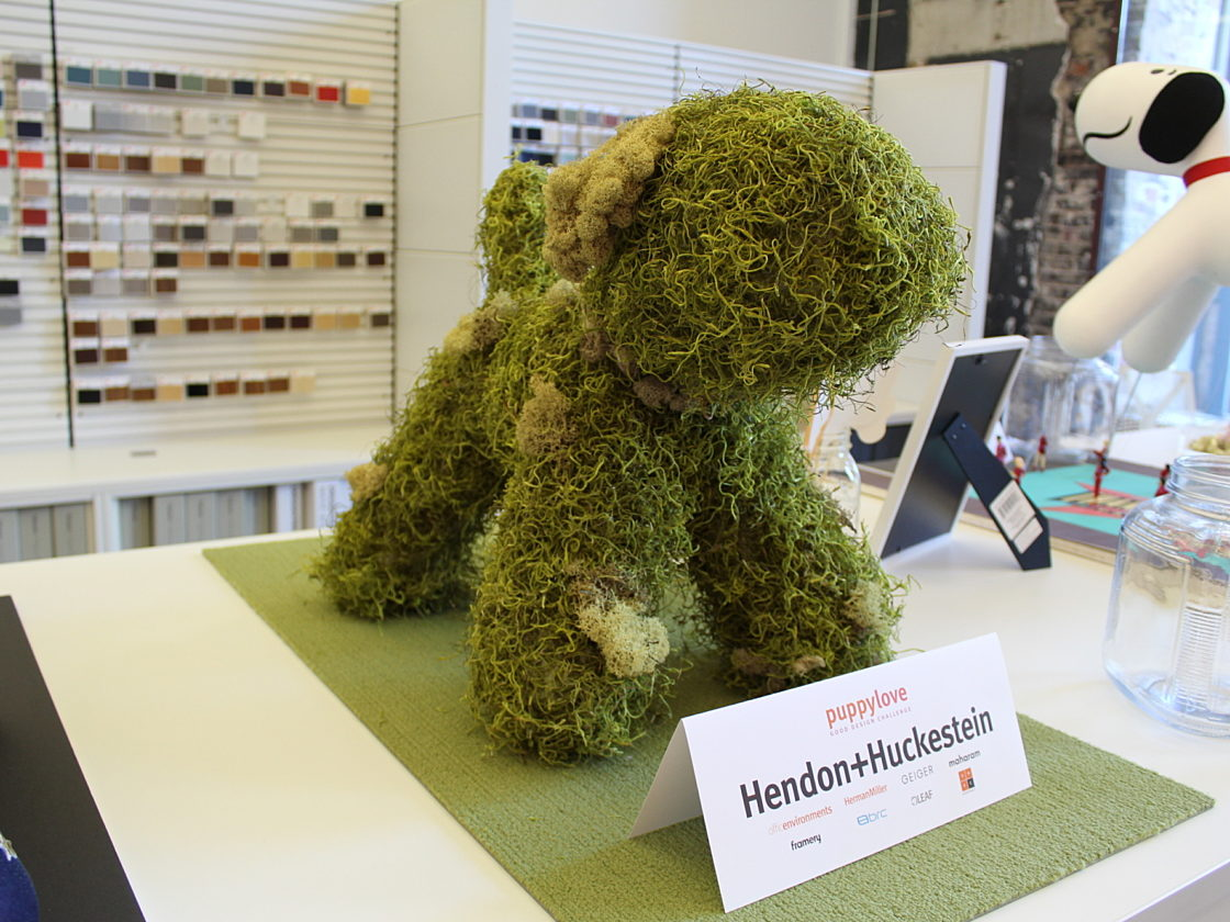 hendon-huckestein puppy love contest