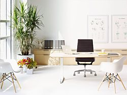 office by office environments