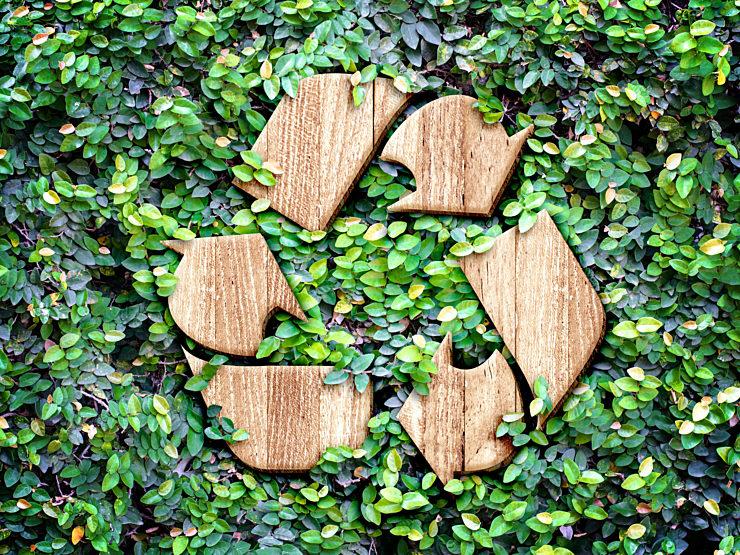 Corporate Sustainability Efforts and Waste Elimination